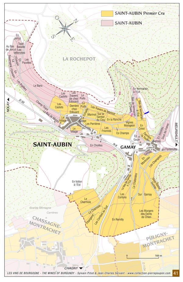 Saint-Aubin-premier-cru-vin-primeur-bourgogne