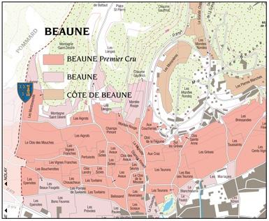 Beaune-1er-Cru-Cyrot-Chaudron