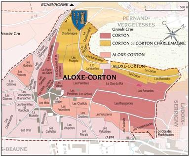 Corton-Charlemagne-Grand-Cru-François-de-Salins