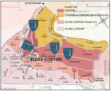 Corton-Grand-CRu-Docteur-Peste