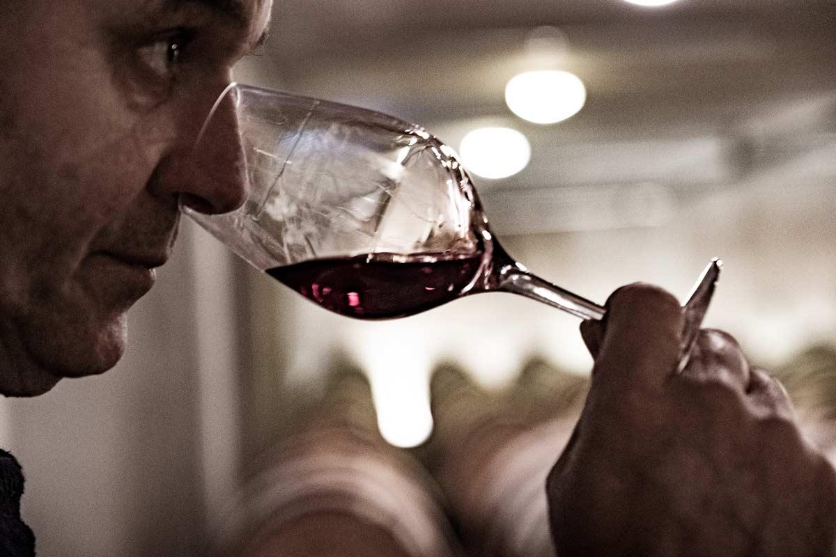 Vente aux enchères des Hospices de Nuits-Saint-Georges : dégustation des 15 vins en vente le 8 mars 2020 (millésime 2019)