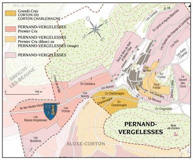 Pernand-Vergelesses-1er-Cru-Rameau-Lamarosse